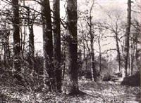 arbres by louis désiré blanquart-evrard