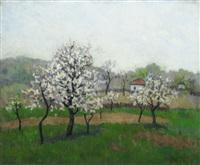 spring by dan ialomiteanu