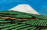 the mount fuji in the blue sky by misao yokoyama