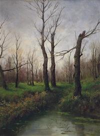 ruscello nel bosco by francesco capuano
