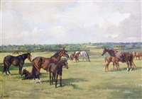 mares and foals by nina colemore