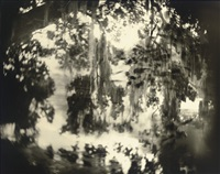 untitled (deep south #32) by sally mann