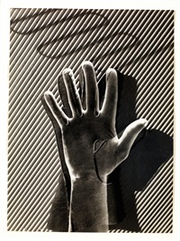 hand and glove by steef zoetmulder