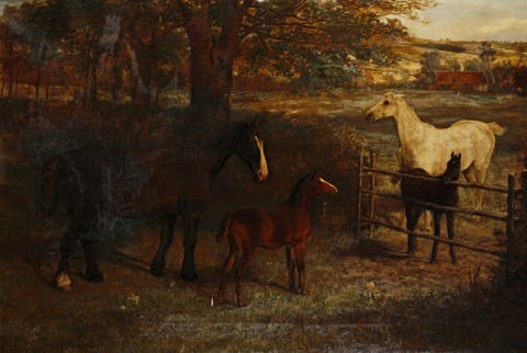 horses in a paddock by david george steell