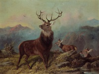 landscape with a stag and two hinds by byron webb