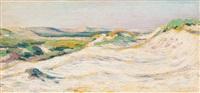 dune landscape by dirk filarski