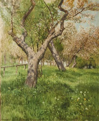 blühender obstgarten by thomas leitner