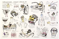 curriculum vitae by norman clive catherine