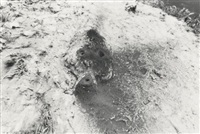 untitled (from the fetish series) by ana mendieta