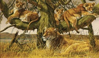 simbas in the yellow fever tree by gary r. swanson