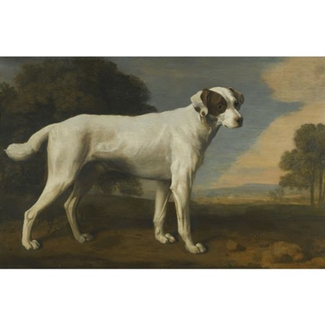 viscount gormanstons white dog by george stubbs