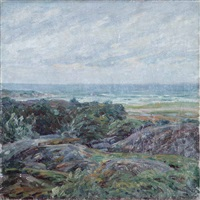 coastal scene by charles salis kaelin