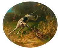 hase, von windhunden gejagt by emil adam