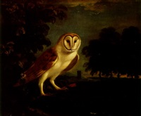 a barn owl in a wooded landscape by willem verelst