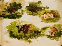studio di mucche by giuseppe ciardi