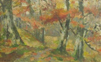 autumn in the forest by nicolae enea