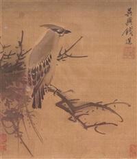 bird in profile by qian xuan