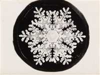 snow crystals (suite of 4) by wilson a. bentley