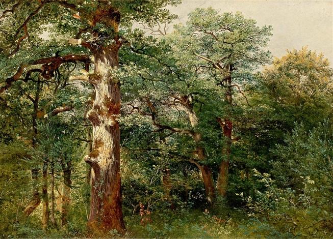 chênes dans la forêt de sauvabelin by alexandre calame
