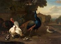 paon, dindons et poules dans le parc d'un palais classique by marmaduke cradock