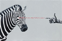 zebra cross by yayat lesmana