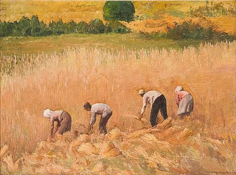harvesting by dimitris yioldassis