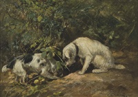 terriers on the hunt, furrowing in a hole by cuthbert edmund swan