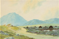 west of ireland cottages and peat stacks by douglas alexander