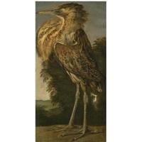 a bittern (roerdomp) by cornelis van lelienbergh