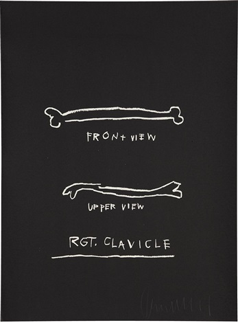 anatomy one plate by jean michel basquiat