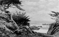 california coast near carmel by albert f. jacobson