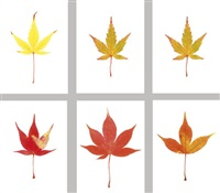acer leaves (set of 6 works) by garry fabian miller