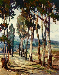the lane, eucalyptus lined road by john cotton