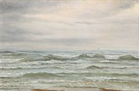 view from skagen strand by peter (johann p.) raadsig
