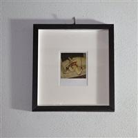 polaroid 01 by nobuyoshi araki