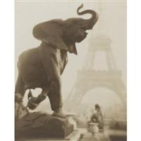 éléphantaisie by pierre dubreuil