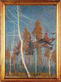 drzewa by tadeusz waskowski