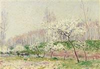 les pommiers en fleurs by alfred sisley