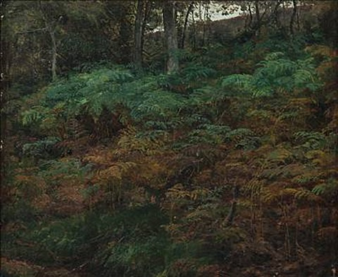 ferns on the forest floor by janus andreas barthotin la cour