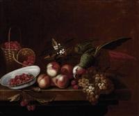 nature morte au perroquet, aux fraises et aux raisins by barend van der meer