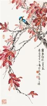 霜叶小鸟 by huang huanwu