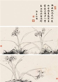 水仙图 (二帧) (2 works; + shitang) by liu bonian