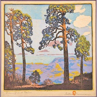 pines - grand canyon by gustave baumann