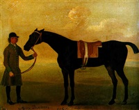 the bay racehorse merry bachelor standing with a groom by john sartorius