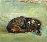cat by gheorghe tomaziu