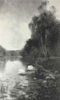 swans feeding at a riverbank by albert e. bailey