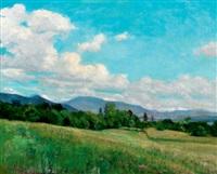 sunny landscape in nagybánya by péter rátz