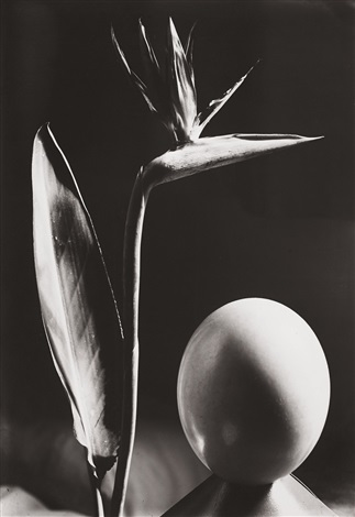 composition avec loeuf by man ray