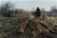 untitled (iowa) (from silueta series) by ana mendieta