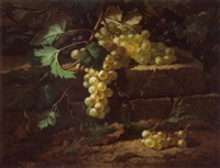 grappe de raisin by edmond de koninck